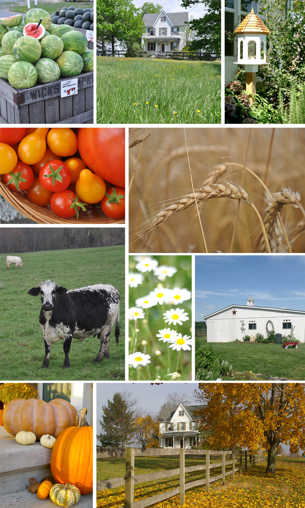 Farmhouse Collage Jacquelynne Steves