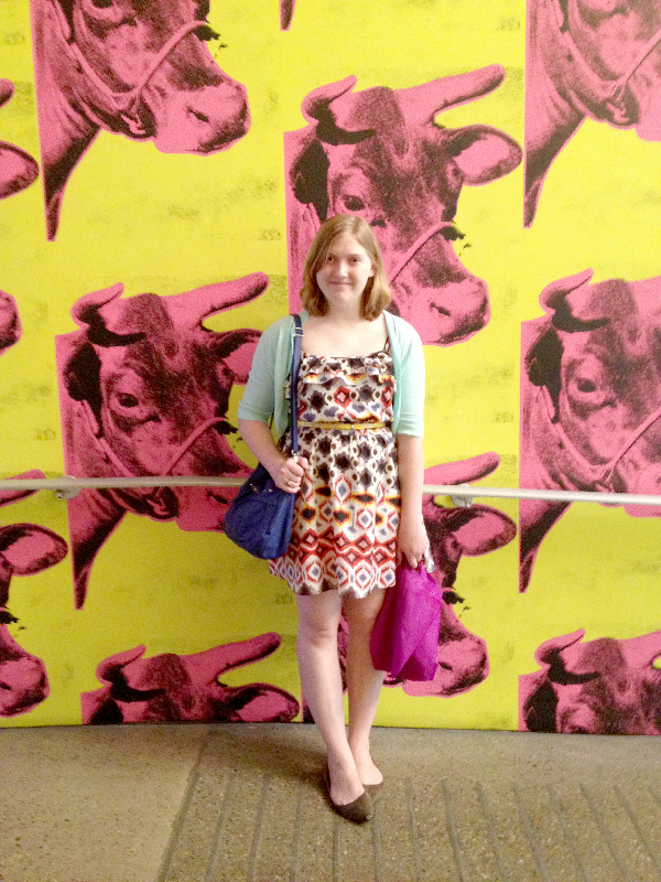 Quilt Market Spring 2014- Jacquelynne Steves- Andy Warhol Museum Pittsburgh