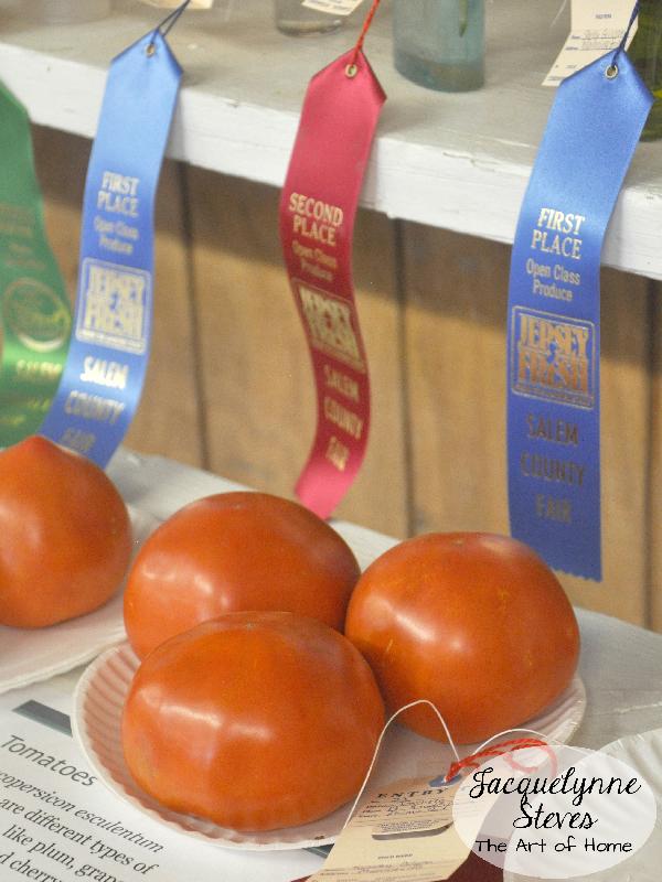 County Fair- tomatoes- JSteves
