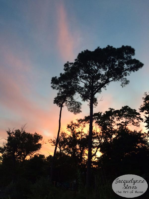 Sunset-JacquelynneSteves