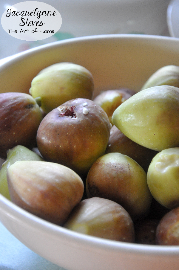Figs-JacquelynneSteves